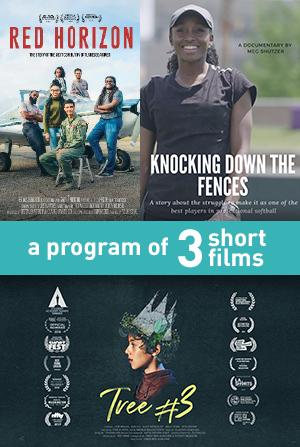 3 Short Film Program Poster